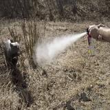 How Does Bear Spray Work?